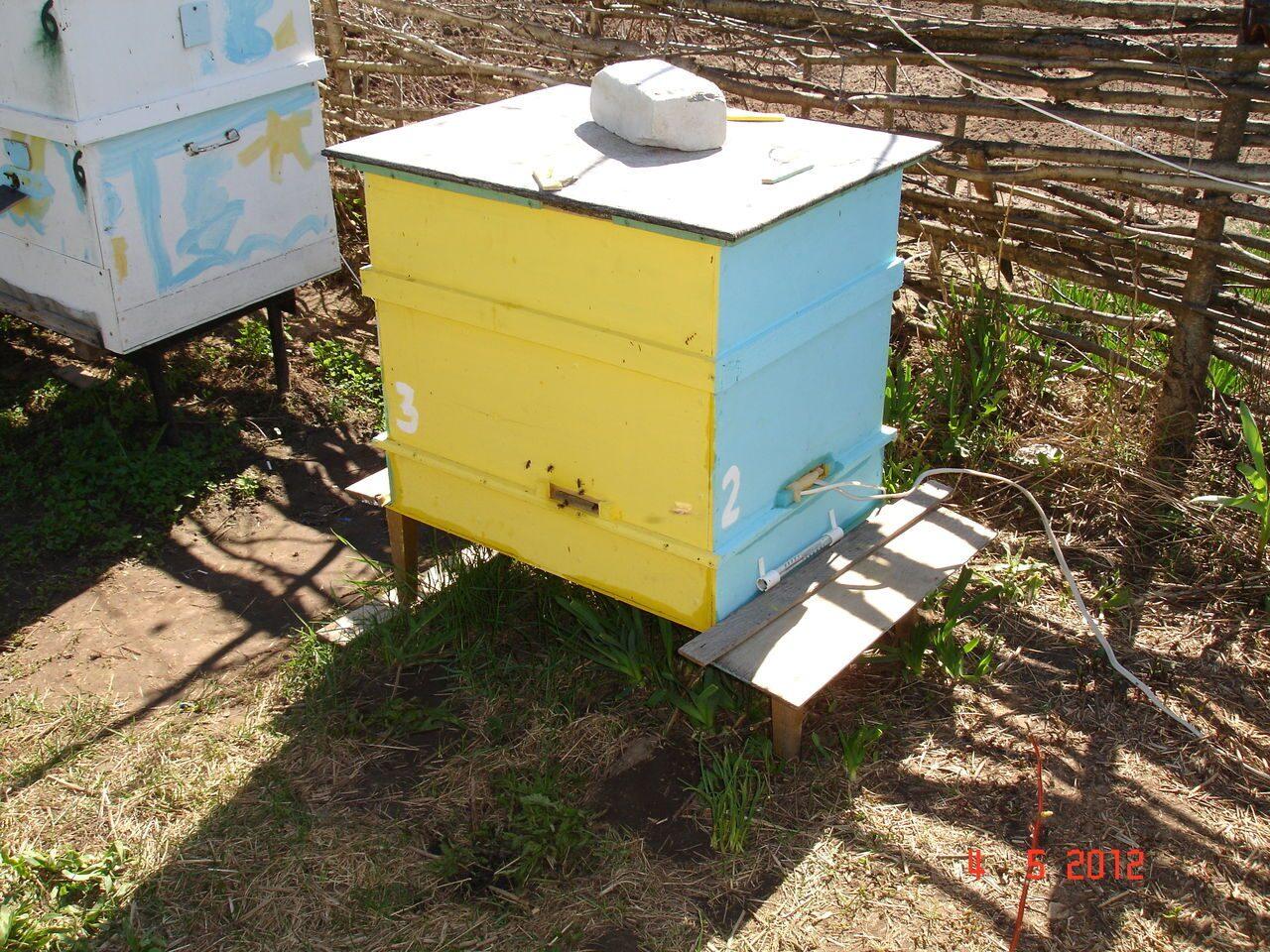 Пчела и улей улей своими руками фото